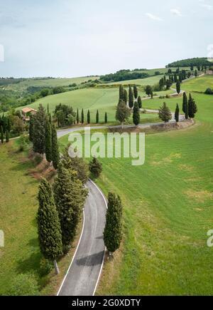 Vista aerea dell'iconica strada dei cipressi di Monticchiello. Pienza, Valle d'Orcia, Siena, Toscana, Italia, Europa.