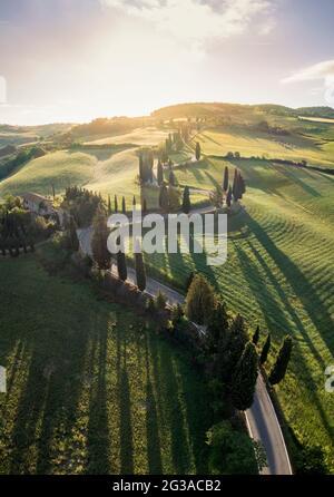 Vista aerea dell'iconica strada dei cipressi di Monticchiello all'alba. Pienza, Valle d'Orcia, Siena, Toscana, Italia, Europa.