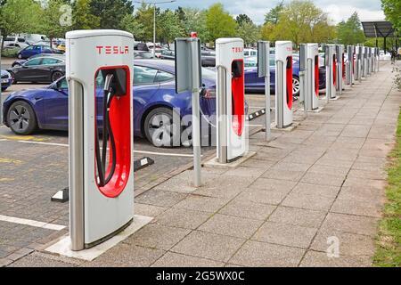 Auto elettriche a cambiamento climatico collegate fila di Tesla stalls parcheggio Welcome Break auto impianto M42 stazione di servizio autostrada Birmingham UK