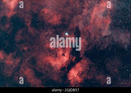 La Nebula farfalla vicino Sadr nella costellazione di Cignus