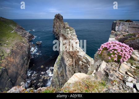 L'Incudine -Tory Island, Co. Donegal Irlanda. Foto Stock