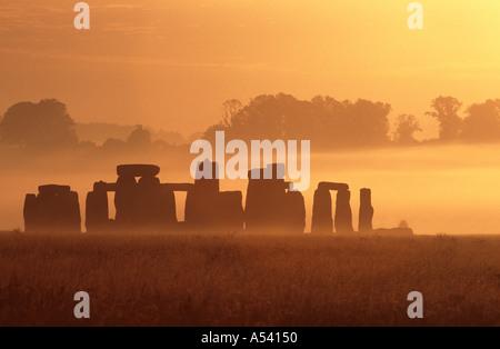 Stonehenge a sunrise Wiltshire, Inghilterra REGNO UNITO Foto Stock