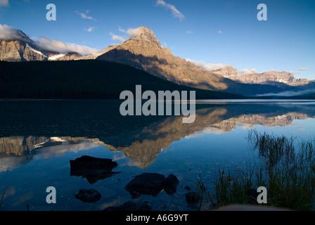 Mattina la riflessione del monte chephren in basso lago di uccelli acquatici, waputik montagne, il parco nazionale Foto Stock