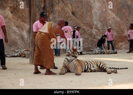 Tiger Tempio a Kanchanaburi Thailandia Foto Stock