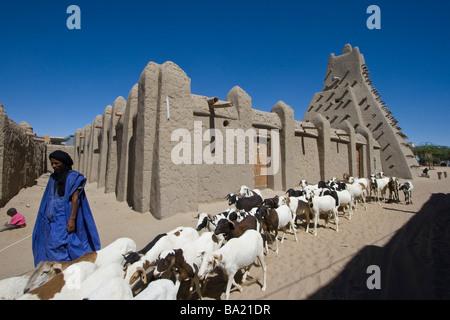 Herder e Moschea di Sankore in Timbuktu Mali Foto Stock