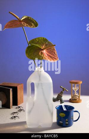 Surreale, 'Still' vita, scarsità d'acqua. Foto Stock