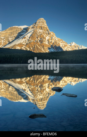 Alto Lago di uccelli acquatici con montatura Chephren, il Parco Nazionale di Banff, Alberta, Canada Foto Stock