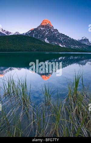 Montare Chephren è riflessa in uccelli acquatici lago lungo la Icefields Parkway nel Parco Nazionale di Banff, Alberta, Foto Stock