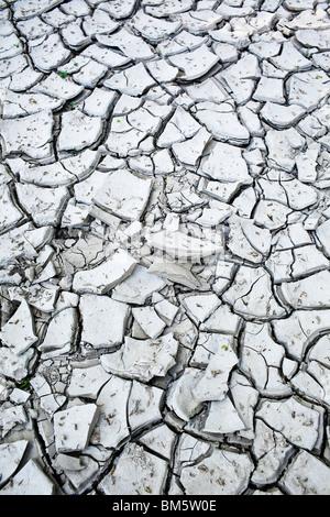 Rotto il fango di argilla a causa di una recente siccità. Foto Stock