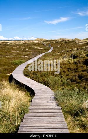 Percorso di legno attraverso le dune vicino a Norddorf, Amrum Island, Germania, vista in elevazione Foto Stock