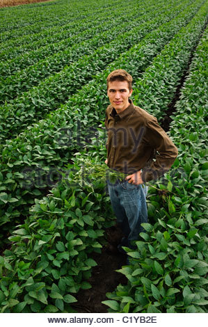 Un giovane agricoltore in un campo di fagioli di soia verde a metà estate nel centro di Iowa. Stati Uniti d'America. Foto Stock