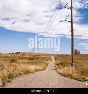 Le linee di alimentazione punteggiando un sentiero a piedi nel parco Nosehill, un enorme parco urbano a Calgary, Foto Stock