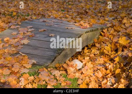 Foglia-coperta ponte pedonale, sul Lago di Ginevra, Wisconsin Foto Stock
