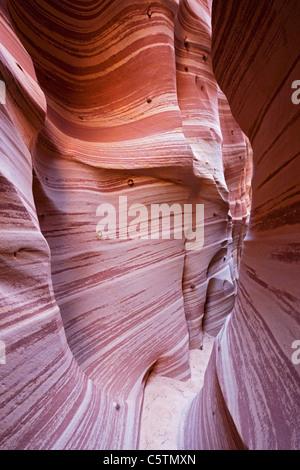 Stati Uniti d'America, Utah, Scalone Escalante National Monument, Zebra slot, close-up Foto Stock