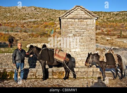 Stilt capanne, nel Delta di Axios (conosciuto anche come 'Vardaris') river, Salonicco, Macedonia, Grecia. Foto Stock