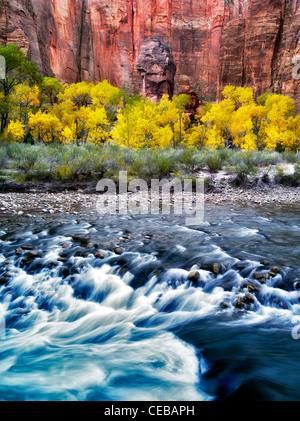 Il pulpito e la caduta del colore con il fiume Vergine al Tempio di Sinawava. Parco Nazionale di Zion, Utah Foto Stock