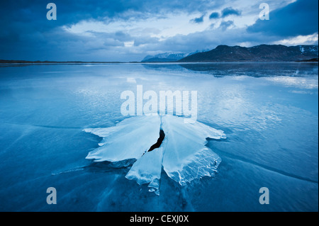 La formazione di ghiaccio congelate di costa di Ytterpollen, Isole Lofoten in Norvegia Foto Stock