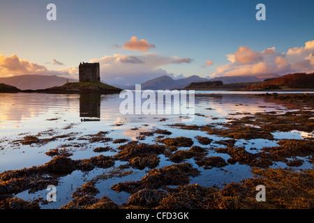 Silhouette di Castle Stalker, una casa torre,tenere, Loch latch, Port Appin, Argyll, Highlands, Scotland, Regno Foto Stock