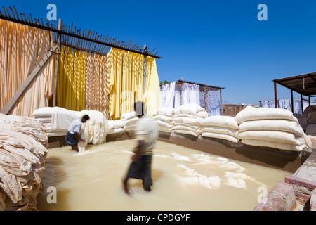 Il lavaggio di tessuto in una piscina di sbianca, Sari fabbrica di indumento, Rajasthan, India, Asia Foto Stock