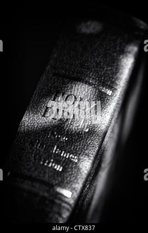 La Santa Bibbia contro uno sfondo scuro. Monocromatico Foto Stock
