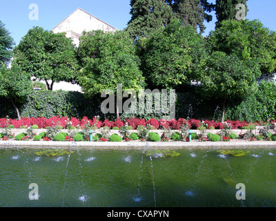 Formale acqua moresco giardino a Alcazar de los Reyes Cristianos, Jardines de Alcazar, Cordoba. Foto Stock