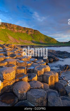 Luce della Sera sulla Giant's Causeway, County Antrim, Irlanda del Nord. Foto Stock
