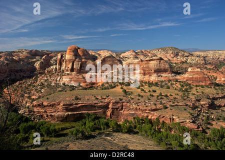 Grand Staircase-Escalante monumento nazionale, Utah, Stati Uniti d'America, America del Nord Foto Stock