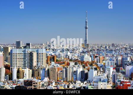 La Tokyo Sky Tree torreggia sopra la densa skyline di Tokyo, Giappone. Foto Stock