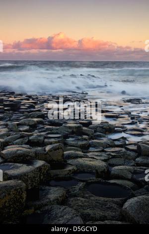 Sunrise toni con la famosa Giant's Causeway - sulla costa di Antrim in Irlanda del Nord - Sito Patrimonio Mondiale Foto Stock