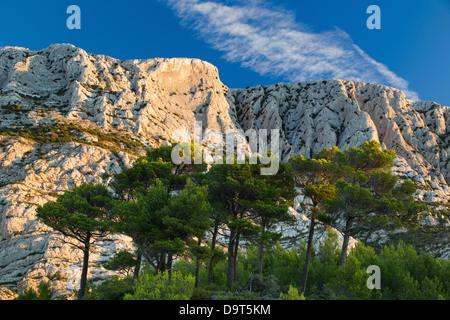 Montagne Ste Victoire all'alba, Var, Provenza, Francia Foto Stock