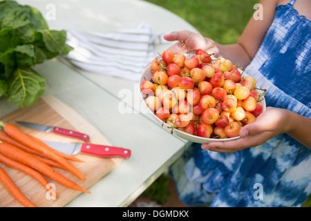 Festa di famiglia. Un bambino che porta una ciotola di fresco ciliegie raccolte a un tavolo da buffet. Foto Stock