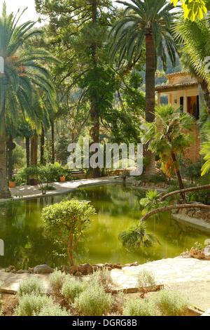 Jardines de Alfabia, giardini arabi con una storica villa ai piedi della Serra d'Alfàbia, Maiorca, Mallorca Foto Stock