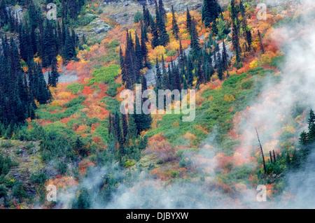Autunno a colori e nuvole basse. Parco Nazionale delle Cascate del Nord. Washington Foto Stock