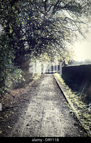 Un viottolo di campagna in autunno. Foto Stock