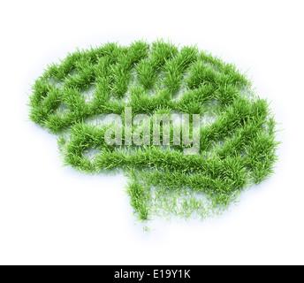 Patch di erba conformata come un cervello umano Foto Stock