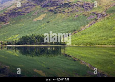 Pre-alba riflessioni sul lago Buttermere, Cumbria, Lake District, Inghilterra Foto Stock
