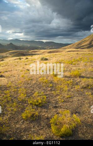 Tramonto nel paese di high desert, John Day fossil beds, Oregon Foto Stock