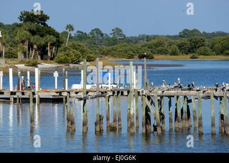 Stati Uniti d'America, Florida, Levy County, Cedar Key Foto Stock