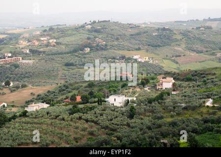 Vista panoramica di oliveti e fattorie su dolci colline d'abruzzo Foto Stock