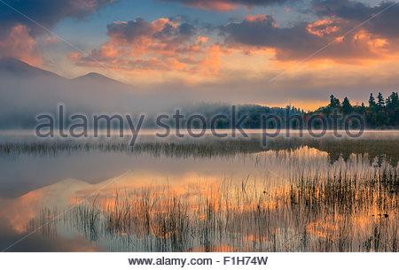 Connery Pond in Adirondacks State Park, vicino a Lake Placid nella parte settentrionale dello Stato di New York, Foto Stock