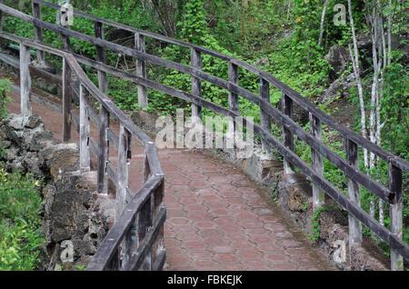 Pietra modellato percorso per turisti con ringhiera in legno circondato da verde vegetazione sulle isole Galapagos, Foto Stock