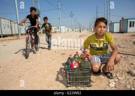 I bambini degli iracheni sfollati la vendita di carburante in Anwald Refugee Camp Iraq settentrionale Foto Stock