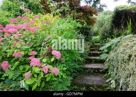 Passi al Garden House, Devon, Regno Unito che corre tra due frontiere. Foto Stock