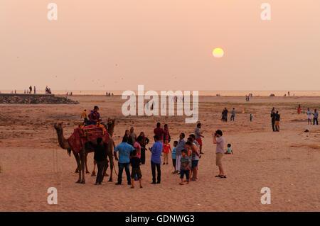 Indiano turisti locali con un cammello sulla spiaggia al tramonto Foto Stock
