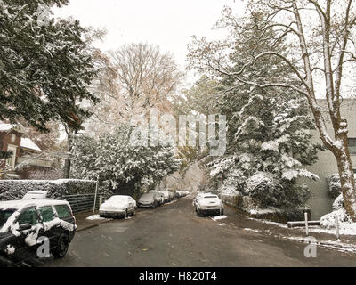 La prima neve di 2016 a othmarschen ad Amburgo, in Germania. Foto Stock