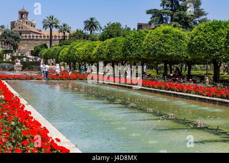 Fontane e giardini, Alcazar de los Reyes Cristianos (Palazzo dei monarchi cristiani), Cordoba, Spagna Foto Stock