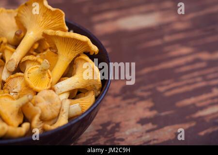 Crudo fresco funghi Chanterelle nella ciotola sul vecchio di legno dipinto di sfondo. Copyspace. Selectiv Focus. Foto Stock