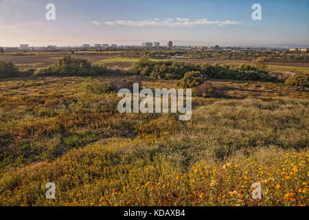 Ballona zone umide è una delle ultime zone umide nel los angeles bacino, Playa del rey, Los Angeles, california, Foto Stock