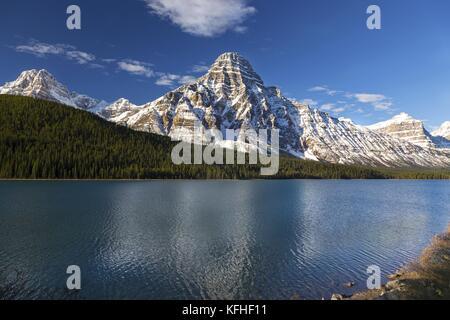 Nevato chephren montagna riflessa in uccelli acquatici laghi sulla Icefields Parkway nel parco nazionale di Banff Foto Stock