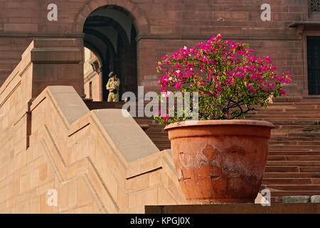 Passi, segretariato centrale (Kendriya Sachivalaya) su Raisina Hill, New Delhi, India Foto Stock